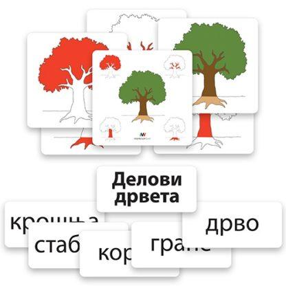 domanov-metod-kartice-delovi-drveta