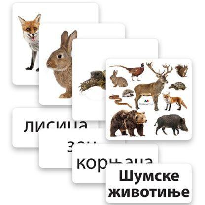 glen-doman-kartice-šumske-životinje