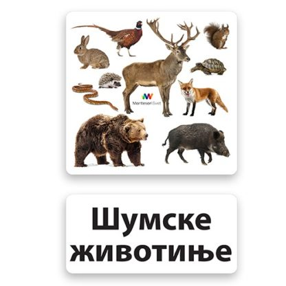 memorijske-kartice-šumske-životinje
