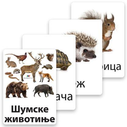 montesori-nomenklaturne-kartice-šumske-životinje