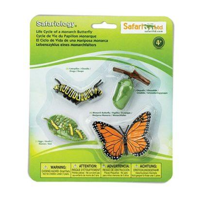 Životni ciklus leptira Safari 2
