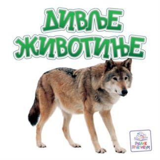 Divlje-zivotinje-slikovnica-knjiga
